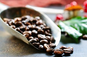 Arabica or Robusta? A Guide to Coffee Varieties